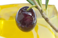 Shiny olive. Into pure olive oil Royalty Free Stock Photography