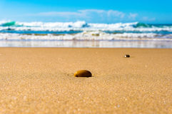 Shiny pebble on sand beach. Summer background. With distant ocean. Selective focus, shallow DOF Royalty Free Stock Image