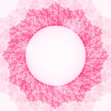 Shiny Pink Blossom Lotus Flower Frame. Stock Photos