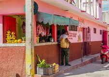 A shiny pink market in Trinidad. A small market selling meat and cavendish banana in trinidad Royalty Free Stock Photo
