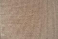 Shiny plain cream-colored polyester fabric. Shiny plain cream colored polyester fabric Stock Photography