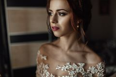 Beautiful brunette stylish bride getting ready in the morning in. Shiny portrait of beautiful bride standing before the window Stock Images