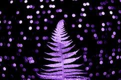 Shiny purple fern on black background with confetti stock photo