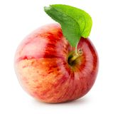 Shiny red apple with green leaf Stock Photos