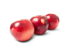 Shiny red autumn apples Royalty Free Stock Images