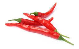 Shiny red chilies Royalty Free Stock Photo