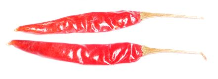 Shiny Red Chillis Stock Photos