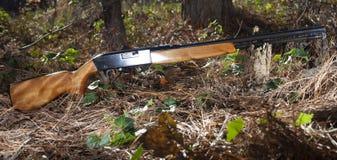 Shiny rifle Stock Photography