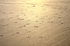 Shiny Sand texture Royalty Free Stock Photography