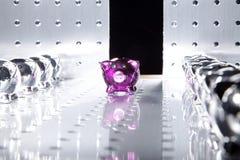 Shiny saving pigs Royalty Free Stock Image