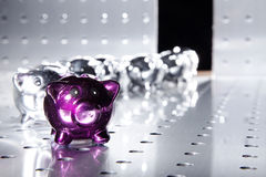 Shiny saving pigs. Are marching in Royalty Free Stock Images
