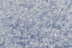 Shiny snow crystals. Close up of shiny snow crystals on field Stock Photography