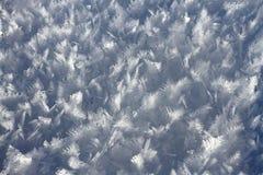 Shiny snow crystals. Close up of shiny snow crystals on field royalty free stock photos