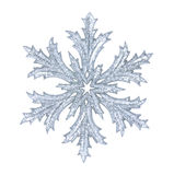 Shiny snowflake Royalty Free Stock Images