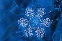 Shiny snowflake crystal. On blue background Stock Photography