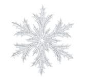 Shiny snowflake Royalty Free Stock Images