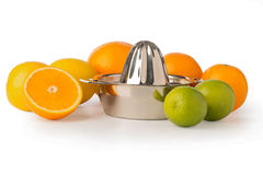 Shiny Stainless Steel Citrus Juicer Surrounded by Citrus Fruits Royalty Free Stock Photo