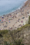 Shiny straws at the edge of a cliffs and people sunbathing, Durdle Door. The picture shows some people sunbathing on a beach and some plants at the edge of a Royalty Free Stock Photo