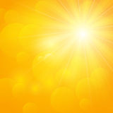 Shiny sun Royalty Free Stock Photo