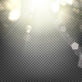 Shiny sunburst background Stock Image