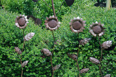 Shiny Sunflowers. Metal sculptures of sunflowers in the gardens of an Amador County, CA, winery Stock Photography