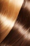 Shiny texture luxurious hair Stock Photography
