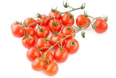 Shiny Tomatoes with stem Stock Photo