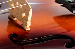 Shiny Violin strings. Shiny Violin - Strings close up Royalty Free Stock Images