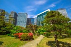 Shiodome buildings in Hamarikyu Gardens Stock Photo