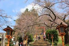 Shiogama Shrine near Chureito Pagoda,. The way to Arakura Sengen Shrine in Japan Stock Photos