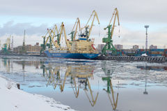 The ship Baltic spring is unloaded at the cargo port, february morning. The Gunboat canal, Saint Petersburg Stock Photo
