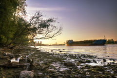 Ship carrying logs (in high dynamic range) Royalty Free Stock Photo