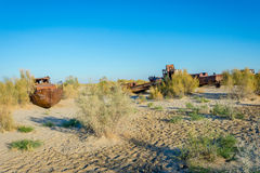 Ship cemetery, Aral Sea, Uzbekistan. Old ships in the desert `ship cemetery` the consequence of Aral sea disaster, Muynak, Uzbekistan Royalty Free Stock Images