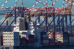 Ship Containers Cranes  Royalty Free Stock Image