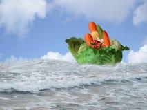 Ship of Dreams vegetarian Royalty Free Stock Image