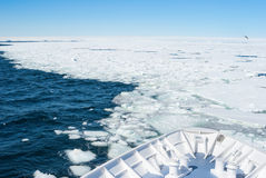Ship entering pack ice royalty free stock photo