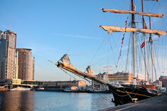 ship för gdynia guldenleeuw Arkivbilder