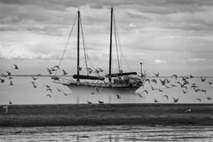 Ship in the fog background Royalty Free Stock Photo