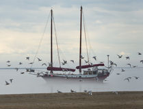 Ship in the fog background in Tadoussac Harbor Royalty Free Stock Photos