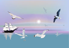 Ship and gulls at sunlight Stock Photo