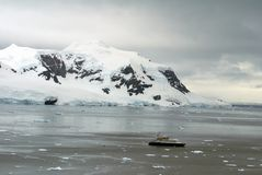 Ship among icebergs floating at the base of a snow covered mountain royalty free stock image