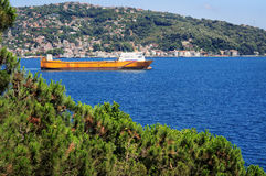 Ship moving along the city's waterway. Cityscape and big ship  shown through the trees of the hillside Royalty Free Stock Images