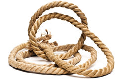 Ship rope and knot isolated. On white background stock photos