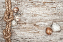 Ship rope, shells and old wood border Royalty Free Stock Photo