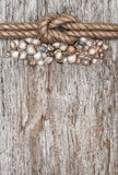 Ship rope, shells and wood background Royalty Free Stock Images