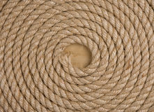 Ship ropes and knot on wood background Royalty Free Stock Photography
