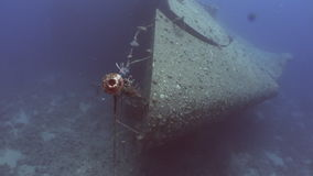 Ship Salem Express wrecks underwater in the Red Sea in Egypt. stock footage
