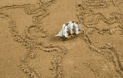 Ship on sand wit global map outline. Miniture ship on sand which pictures global map with continents and oceans Royalty Free Stock Photography