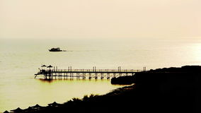 Ship is at sea at dawn, near the beach, long shot stock video