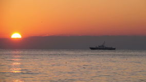 The ship on the sea horizon at sunset. The ship on the sea horizon. Seagulls at sunset stock video